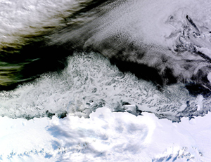 Click to zoom in on NASA's photo of sea ice