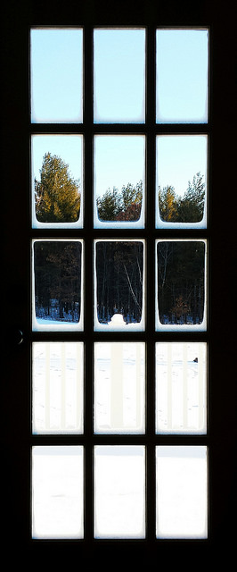 photo of snow and trees through French door