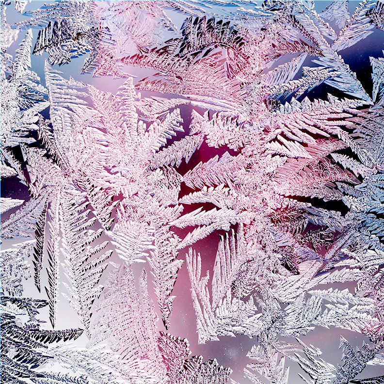stylized photo of frost on glass
