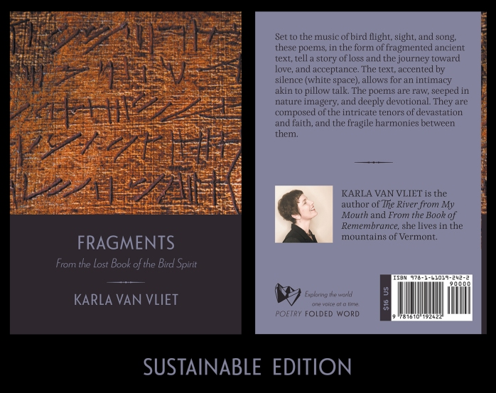 front and back cover of Fragments by Karla Van Vliet