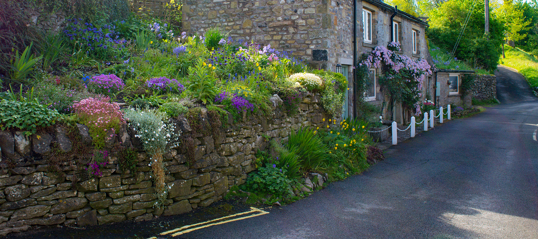 blooming flowers and road in front of English stone cottage